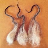 Larson_Nordic Wools 4